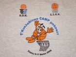 1o Πανκυκλαδικό camp basket